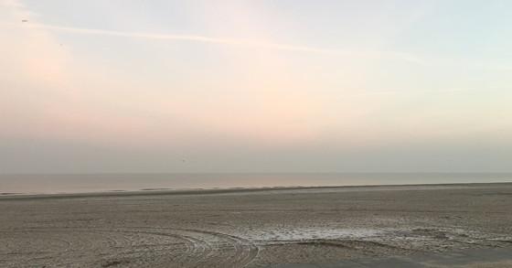 Ploggen 12 Maart 2016: Wandelen door de duinen pastellucht